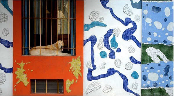 [Horacio Paone for The New York Times]