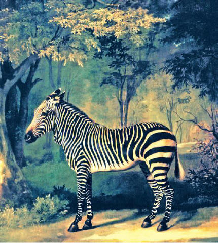[YAELE CENTER FOR BRITISH ART]George Stubbs's 'Zebra' (1762–63) is part of the Paul Mellon Collection, now at the Yale Center for British Art, which is celebrating the centenary of Mellon's birth.