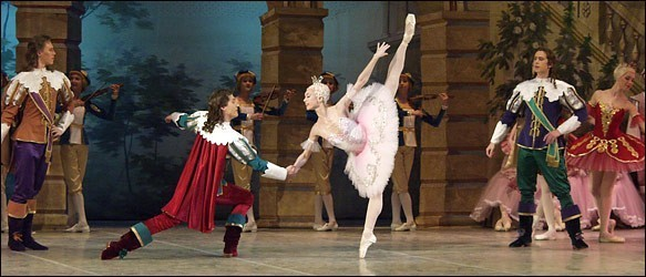 [Tchaikovsky Ballet and Orchestra]